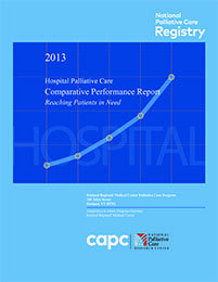 2013 Palliative Care Registry