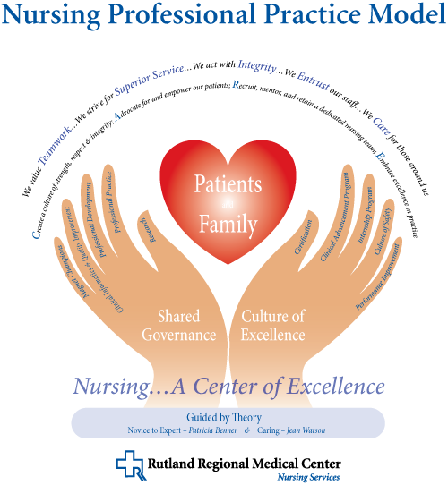 is nursing a professional practice